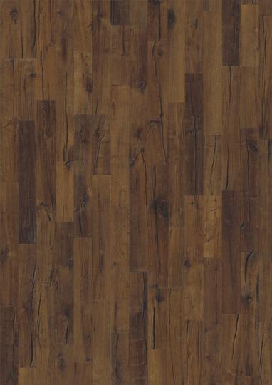 oak domo