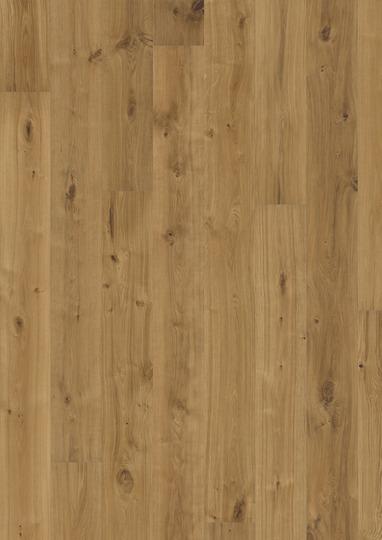 oak vedbo